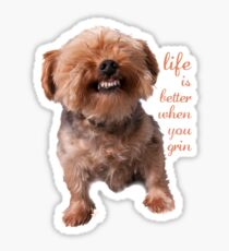 Dog Life is better when you grin Sticker