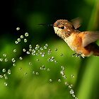 TINY BUBBLES...30 by RoseMarie747