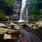 Snug Falls, Tasmania by Alex Wise
