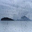 Wrangell Narrows by Alex Preiss