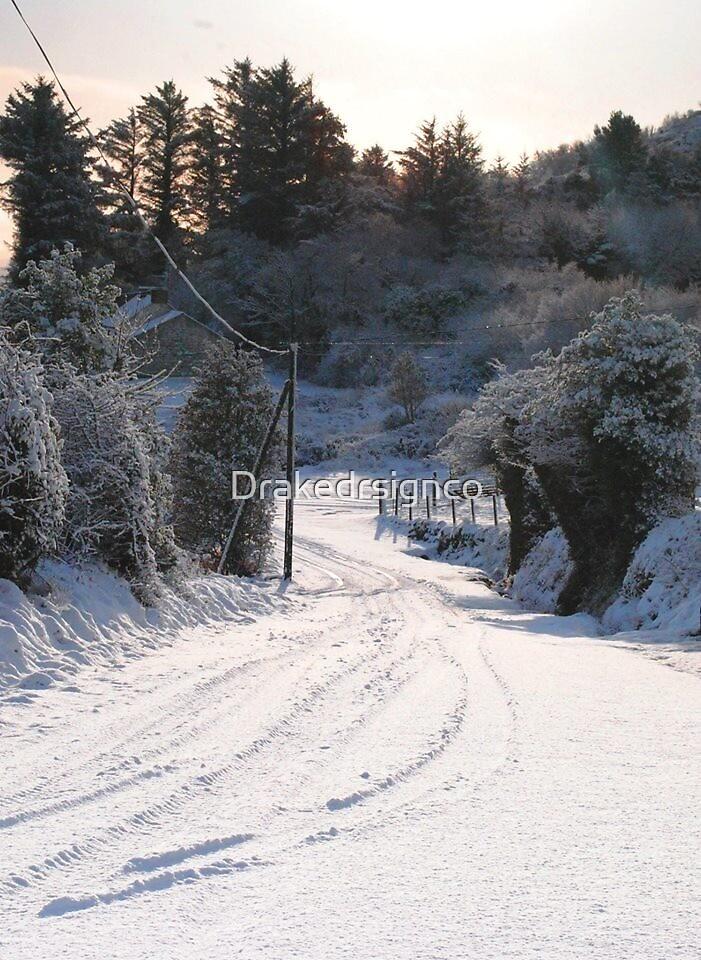 Winter Wonderland  by Drakedrsignco