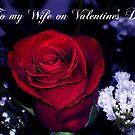 To my Wife on Valentine's Day by artgoddess