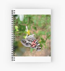 AMERICAN LADY ON SPANISH NEEDLES Spiral Notebook