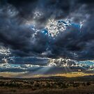 Thunderstorm Rays  by Nicole  Markmann Nelson