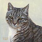 Stripes - Feral Cat at Rockaway by artbyakiko