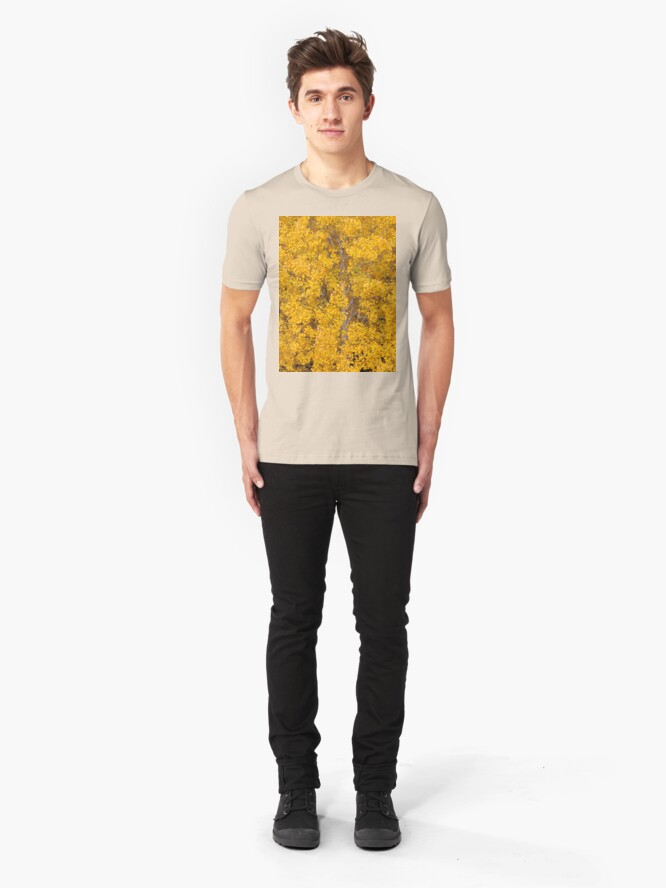 Alternate view of Aspen tree foliage in autumn colors Slim Fit T-Shirt