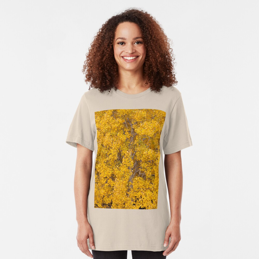 Aspen tree foliage in autumn colors Slim Fit T-Shirt