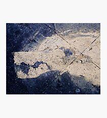 Pavement Wolf Photographic Print
