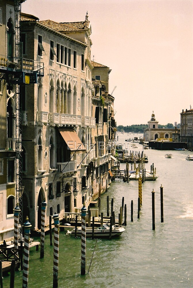 View of the Grand Canal, Venice by Elana Bailey