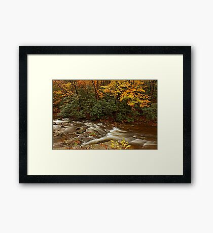 Laurel Creek Framed Print