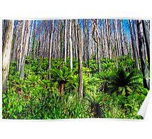 marysville forest Poster