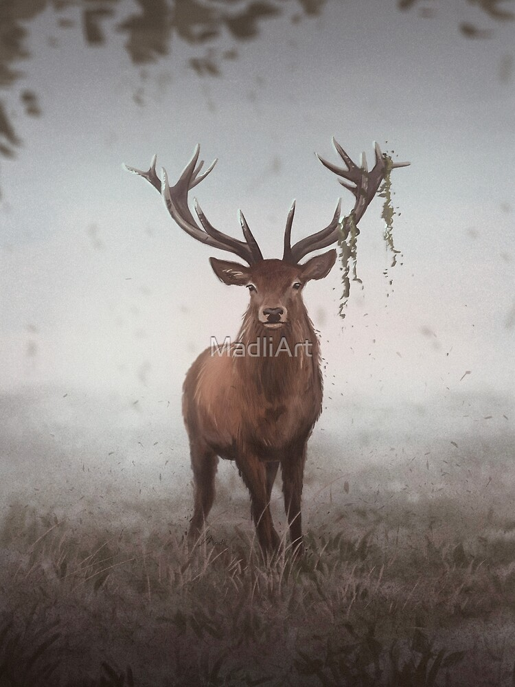 Dreamy day deer by MadliArt