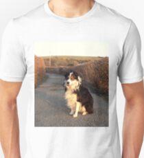 Country Lane Laddie T-Shirt