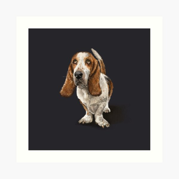 The Basset Hound Dog Art Print