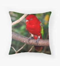Birds Park 2 Throw Pillow