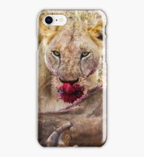 Africa - Lioness & kill iPhone Case/Skin