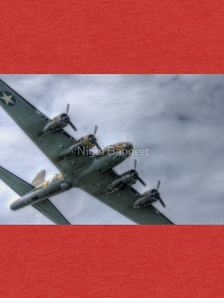 Sally B Over the Top by Nigdaw