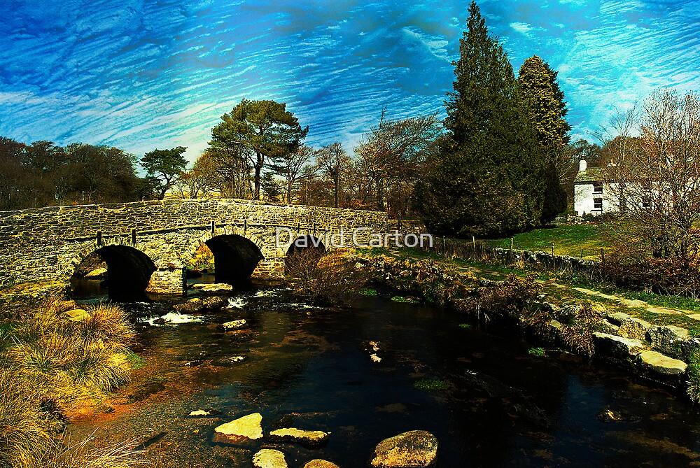 Postbridge, Dartmoor  by David Carton