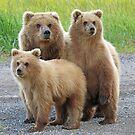 Family Photo!! by jozi1