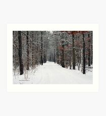 The Cold Light Of Day Art Print