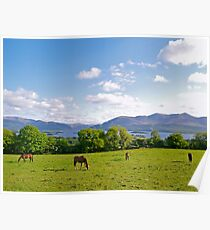 Springtime in County Kerry Poster