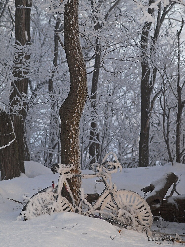 Frosted Everything by Dawne Olson