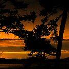 Sun Set by Klaus Bohn