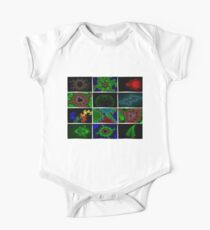 Twelve Fractal Images with Borders Kids Clothes