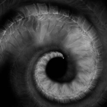 Lee Lee Ingram's 'x-ray spiral' by Art4XMRV