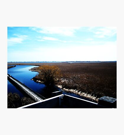 Point Pelee, Ontario- II Photographic Print