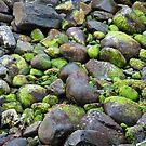 Sea-side Boulders by Werner Padarin