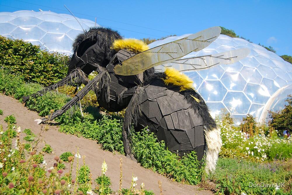 giant wasp eden project cornwall uk by dondavisuk