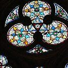 Notre Dame by minikin