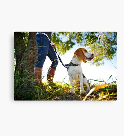 Duke Canvas Print