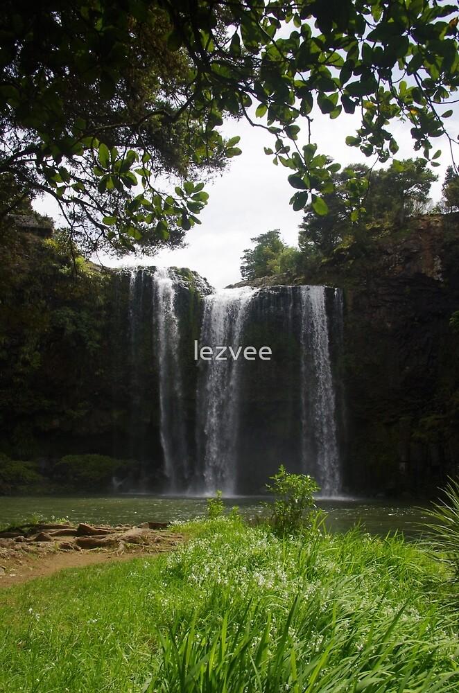 Whangarei Falls (3) by lezvee