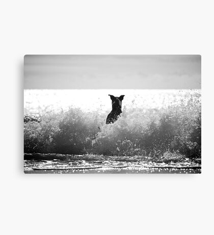 Surf Time! Canvas Print