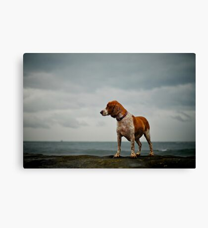 Hollie and the storm Canvas Print
