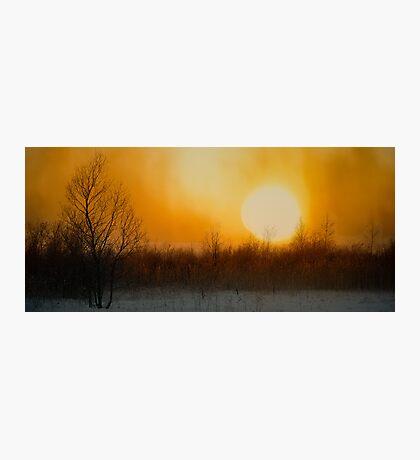 January Sunrise Photographic Print