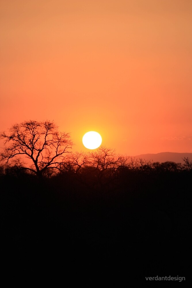 South African Sunset by verdantdesign