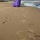Seashore Memories by Lita Medinger
