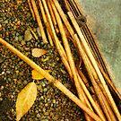 Leaf Zen Z by Rebecca Cozart