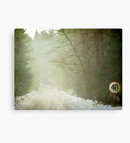 Forty Canvas Print