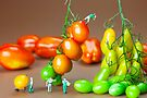 Colorful Tomato Harvest miniature art by Paul Ge