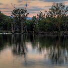 Reflections Australiana - Murray River , Australia - The HDR Experience by Philip Johnson