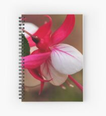 Fuschia - Bev Woodman Spiral Notebook