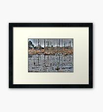 Alabama Swamp Framed Print