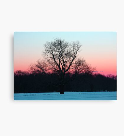 Peaceful Air Canvas Print