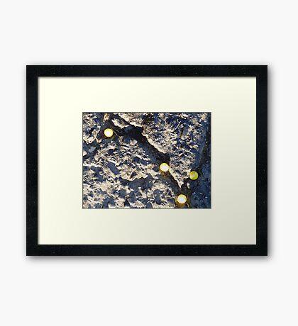 01-15-11  The Social Order of Lemonheads Framed Print