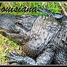 Louisiana Gator by BShirey
