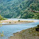 Rio Grande de Terraba  by edherrera
